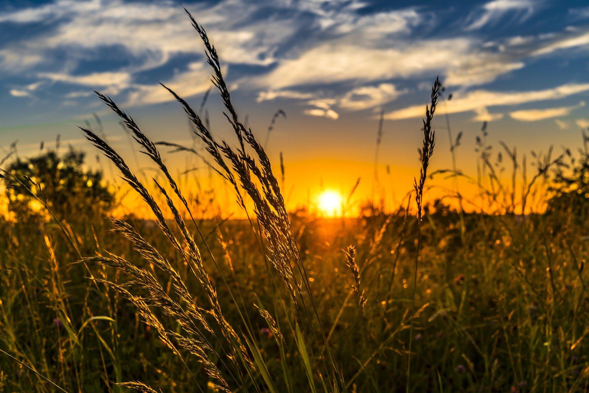 Farm Management Canada Welcomes New Directors, Celebrates Success